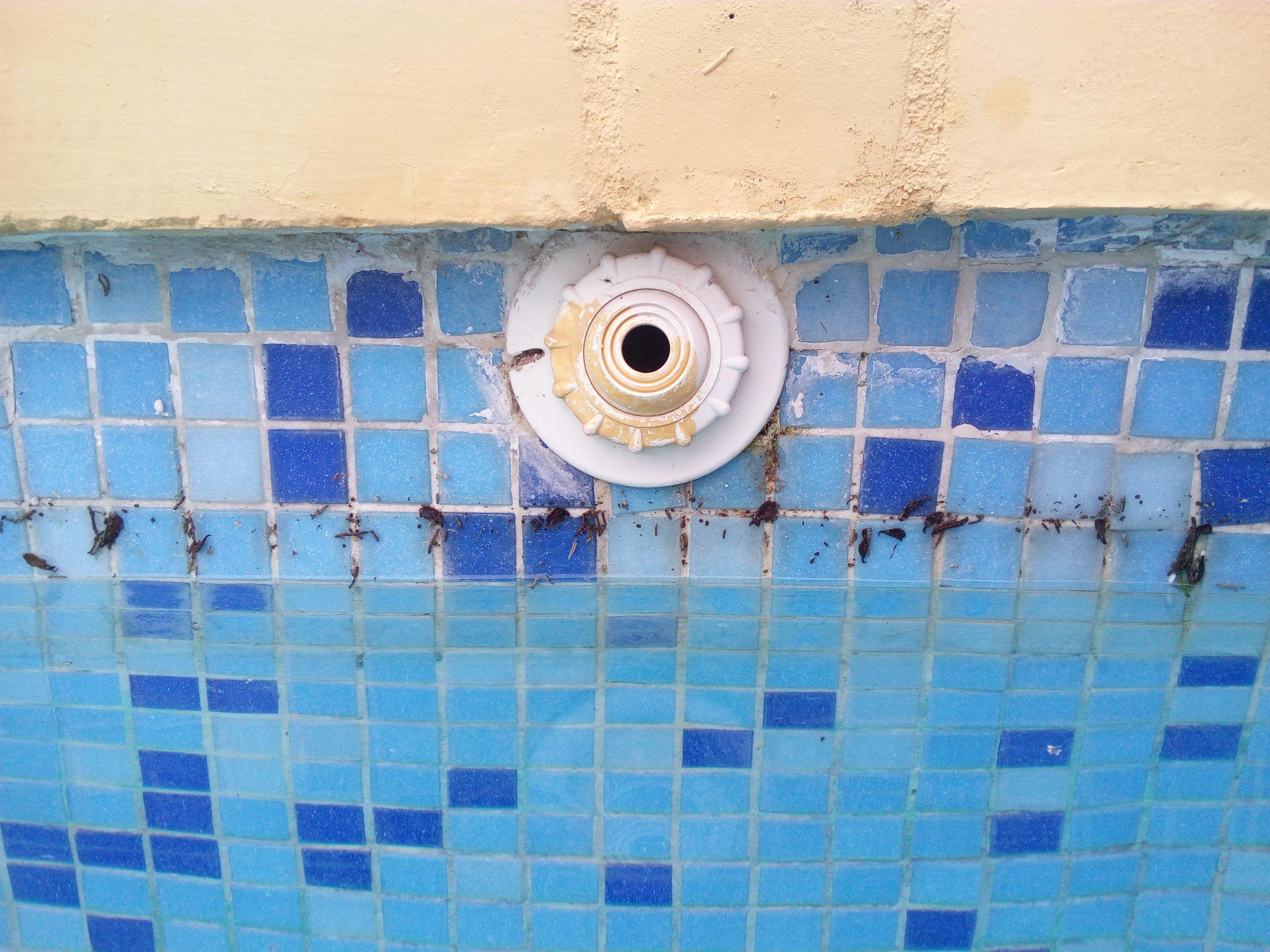 Reformas y reparación de piscinas de hormigón con gresite