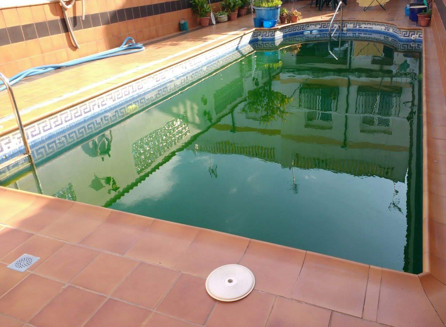 Piscina con el agua verde para recuperar
